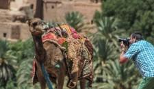 Scenes of Morocco