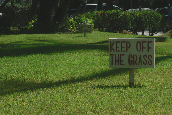 Keep Off the Grass: An Allegory